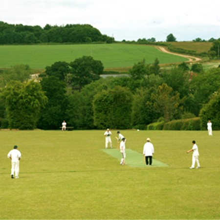 Cricket match in Alresford